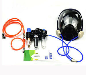 Chemical Industry Paint Spray Supply Air Fed Respirator 6800 Full Face Gas Mask