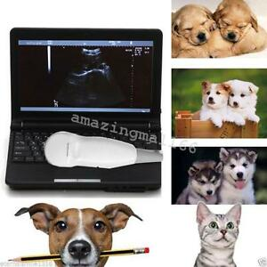 Vet Pet Full Digital Laptop Ultrasound Scanner Micro convex Battery Bag Sale