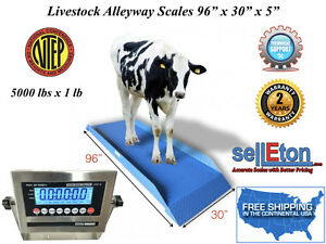 Ntep legal For Trade Livestock Cattle vet Alleyway Scale 5000 Lbs X 1 Lb