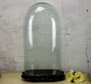 Antique Victorian Oval Hand Blown Glass Globe Dome Doll Clock Display 17 71 H