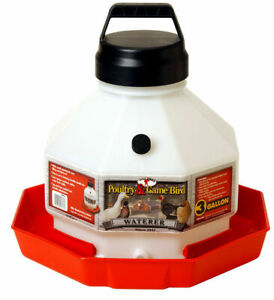 Little Giant Ppf3 Plastic 3 Gallon Poultry Waterer