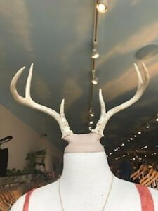 Mannequin Dress Form Display Antler Head