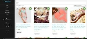 Lingerie Website For Sale Turnkey Ready To Go 20 Per Sale
