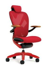 Positive Posture Vaya Ergonomic Office Chair Limited Edition factory Warranty