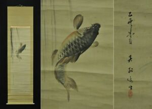 Hand Painted Carp Drawing Hanging Scroll Japanese Painting Useful Ems F S