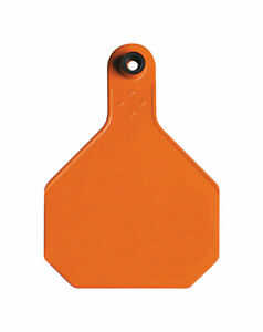 Y tex Large Blank Plastic 2 piece Ear Tag