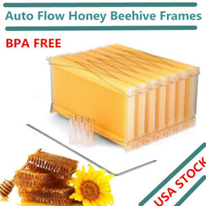 7pcs Auto Honey Beehive Frame Beekeeping Kit Bee Hive Frame Harvesting Usa