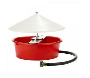 Little Giant Covered Automatic Poultry Waterer Fresh Water For Your Birds