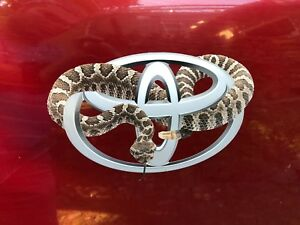 Toyota Diamondback Rattlesnake Fuel Door Sticker Decal 4runner Tacoma Tundra 86