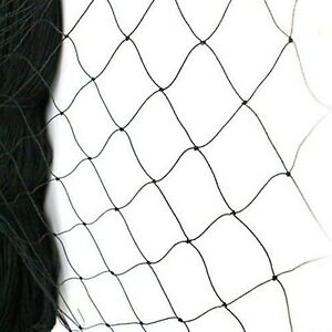 25 X 50 Net Netting For Bird Poultry Aviary Game Pens New 2 4 Square Mesh