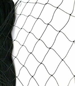25 X 50 Net Netting For Bird Poultry Aviary Game Pens New 2 Square Mesh Si