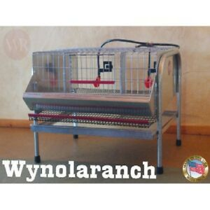 Quail Layer Cage Breeding Pens Hatching Eggs