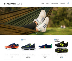 Sneakers Shoes Turnkey Website Business For Sale Profitable Dropshipping