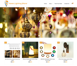 Home Lighting Turnkey Website Business For Sale Profitable Dropshipping