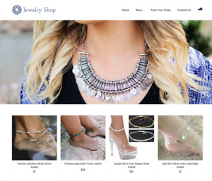 Jewelry Store Turnkey Website Business For Sale Profitable Dropshipping