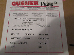 Gusher Stainless Steel Vertical Immersion Pump gmvcp8 80 Black new