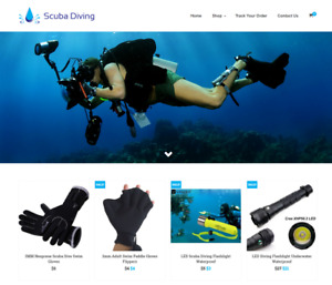 Scuba Diving Turnkey Website Business For Sale Profitable Dropshipping