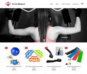 Exercise Equipment Turnkey Website Business For Sale Profitable Dropshipping