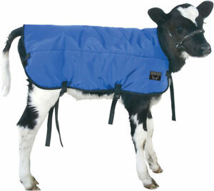 Calf Blanket Coat Warmer Regular Size Blue Nylon Double Insulated Waterproof