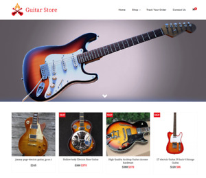 Established Guitar Turnkey Website Business For Sale Profitable Dropshipping