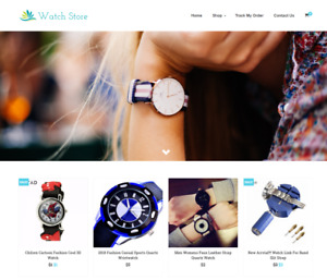 Watch Store Turnkey Website Business For Sale Profitable Dropshipping