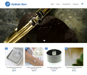 Aesthetic Store Turnkey Website Business For Sale Profitable Dropshipping