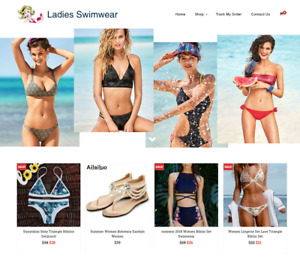 Ladies Swimwear Turnkey Website Business For Sale Profitable Dropshipping