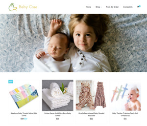 Baby Care Turnkey Website Business For Sale Profitable Dropshipping