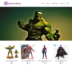 Established Marvel Turnkey Website Business For Sale Profitable Dropshipping