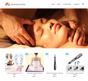 Acupressure Turnkey Website Business For Sale Profitable Dropshipping