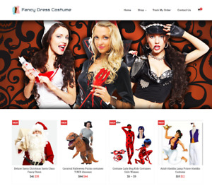 Fancy Dress Costume Turnkey Website Business For Sale Profitable Dropshipping
