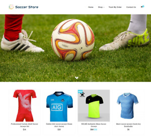 Established Soccer Turnkey Website Business For Sale Profitable Dropshipping