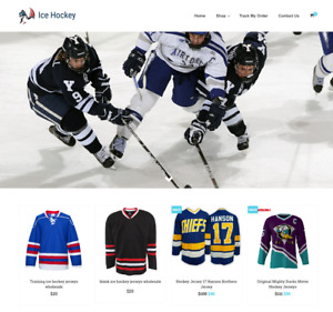 Ice Hockey Turnkey Website Business For Sale Profitable Dropshipping
