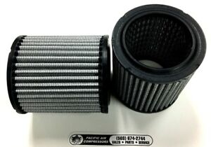 Solberg 19 Champion P05051a Polyester Air Filter Elements 2 Pack