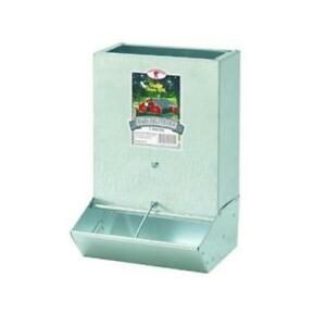 Little Giant Baby Pig Feeder Gray