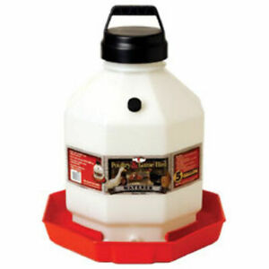 Poultry Fountain Game Bird 5 Gallon Plastic Waterer Chicken Easy Carry
