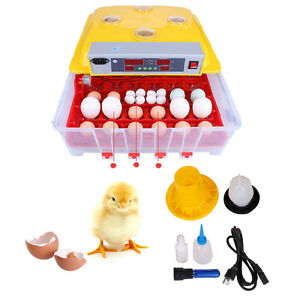 36 Digital Egg Incubator Hatcher Chicken Eggs Hatching Lab Science Equipment