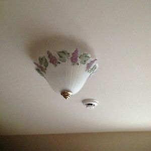 Vintage Ceiling Light Fixture Frosted Glass Shade Grape Vine Pattern