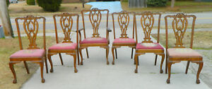 Set Of 6 Chippendale Tiger Oak Dining Chairs 1 Arm 5 Side Circa 1890