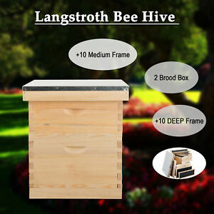 Upgraded 20 Frames 2 Box Beekeeping Kit Bee Hive Beehive Frames W queen Excluder