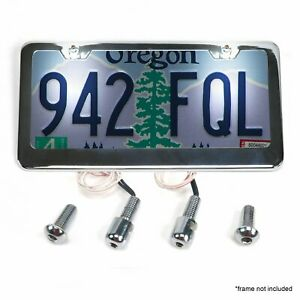 Stainless Steel License Plate Lighted Bolts Hot Rod