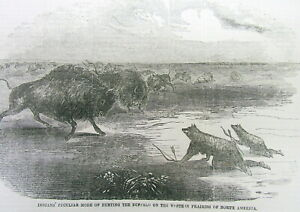 1851 Illustrated Newspaper Wth Engraving Native American Indians Hunting Buffalo