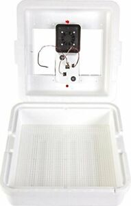 Miller 10300 Little Giant Circulated Air Incubator With Fan
