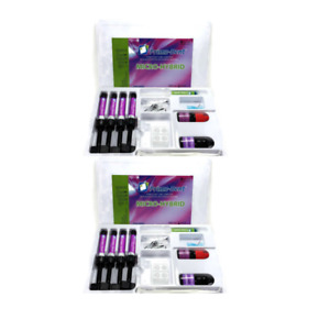 2 Packs Prime Dent Micro Hyrid Kit X4 001 414