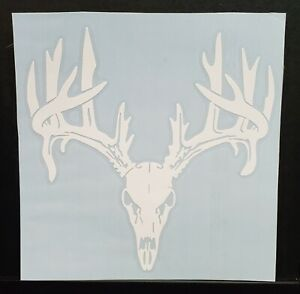 Deer Hunting Sticker Decal Big Buck Skull Mount Truck car 5x5 Inch 28