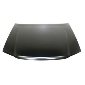 Capa 04 12 Chevy Colorado Canyon Pickup Truck Hood Panel Assembly Primed Steel