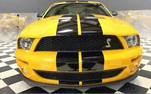 Ford Shelby Mustang Gt500 Svt