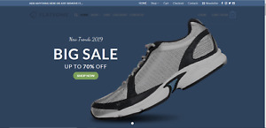 Profitable shoes turnkey dropship website business for sale