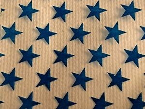 100 Small Baggies 2020 2 X 2 Mini Zip Lock Poly Bags Blue Star
