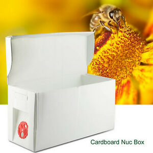 Beehive Hive Box Queen Pollination Beekeeping For Bee Mating Copulation